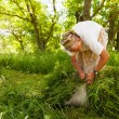 Senior woman piling up mowed grass — Foto de Stock