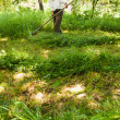 Senior farmer mowing with vintage scythe - Lizenzfreies Foto
