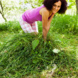 图库照片: Young woman piling up mowed grass