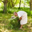 Senior woman piling up mowed grass — Foto de stock #11529364