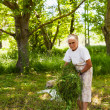 Стоковое фото: Senior woman piling up mowed grass
