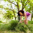 Young woman piling up mowed grass — Foto de stock #11529374