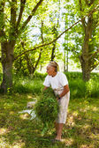 Senior woman piling up mowed grass — Stock Photo