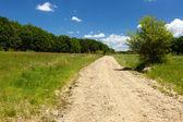 Rural road — Stock Photo