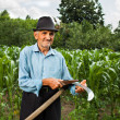 Senior farmer sharpening his scythe — Stock Photo #11540084