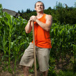 Young farmer near a corn field - Stock Photo