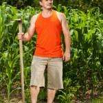 Young farmer near a corn field — Stock Photo