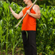 Young farmer near corn field — Stock Photo #11540259