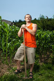 Young farmer near a corn field — Stock Photo