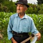 Senior farmer sharpening his scythe — Stock Photo #11688715