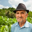 Senior farmer with a corn field in the background — Stock Photo #11688729