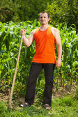 Young farmer near a corn field — Stockfoto