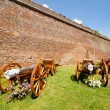 Stock Photo: Canons near wall