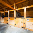 Stable with horses - Stock Photo