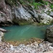 Izbucul Galbenei, karstic spring - Stock Photo