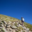 Woman hiking, on mountain trail — Stock Photo #12105433