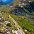 Winding road and trail — Stockfoto