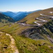 Winding road and trail — Stock Photo