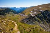 Kronkelende weg en trail — Stockfoto