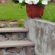 Petunia planter on stairs — Stock Photo