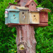 Birdhouse condos — Stock Photo