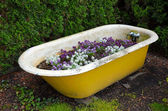 Old tub flower planter — Stock Photo