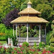 Stock Photo: Gazebo and roses