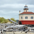 Lighthouse and driftwood — Stock Photo