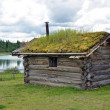 Stock Photo: Little cabin with sod roof