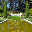 Botanical garden pond — Stock Photo