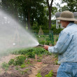 Watering the garden — Stock Photo #11375080