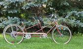Tandem fiets — Stockfoto
