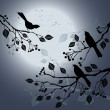 Birds on the branch during summer's night — 图库矢量图片
