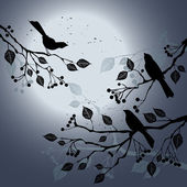 Birds on the branch during summer's night — Vector de stock