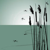 Reeds in the water and few dragonflies - vector — Vecteur