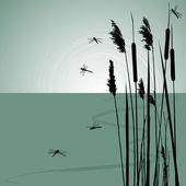Roseaux dans l'eau et quelques libellules - vector — Vecteur