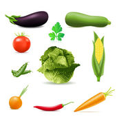 Set of icons vegetables vector illustration — Stock Vector