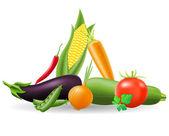 Still life of vegetables vector illustration — Stock Vector