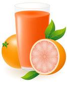 Grapefruit juice vector illustration — Stock Vector