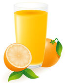 Orange juice vector illustration — Stock Vector