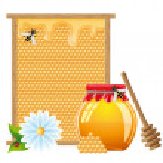 Ilustración de vector de miel natural — Vector de stock