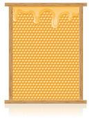 Honung kam i ram vektor illustration — Stockvektor