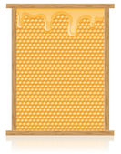 Honey comb in the frame illustration — Stock Photo