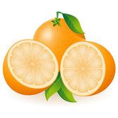 Orange illustration — Stock Photo
