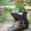 Stock Photo: Old shoe used in garden design
