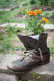 Old shoe used in garden design — Stock Photo
