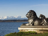 Tutzing lion head — Stock Photo