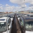 Stock Photo: Large group of cars