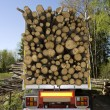 Stock Photo: Loaded Timber