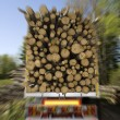 Loaded Timber - Stock Photo